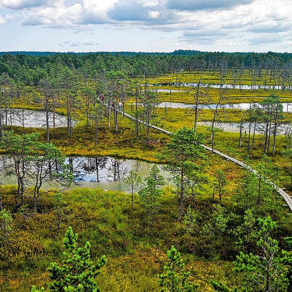 Природа Эстонии, путешествие по самым живописным местам