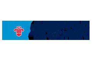Логотип China Southern Airlines