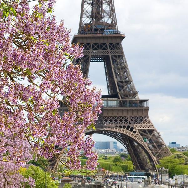 Эйфелева башня, достопримечательности Парижа, экскурсии по Франции