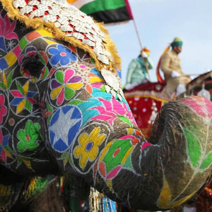 Путешествия и фестиваль в Индии