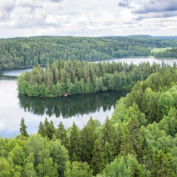 Природа Финляндии, путешествия по лесам, сплав на байдарках