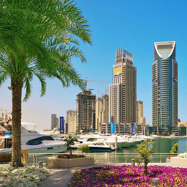 Посетить Абу-Даби и другие красивые города в Арабских Эмиратах