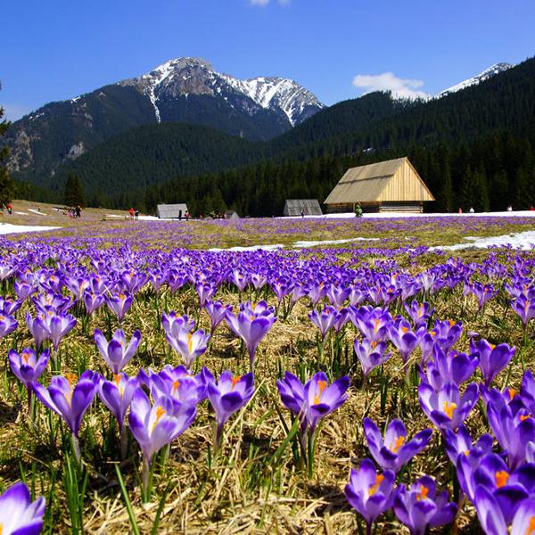 Красивые пейзажи Польской природы, Интересные места в Польше