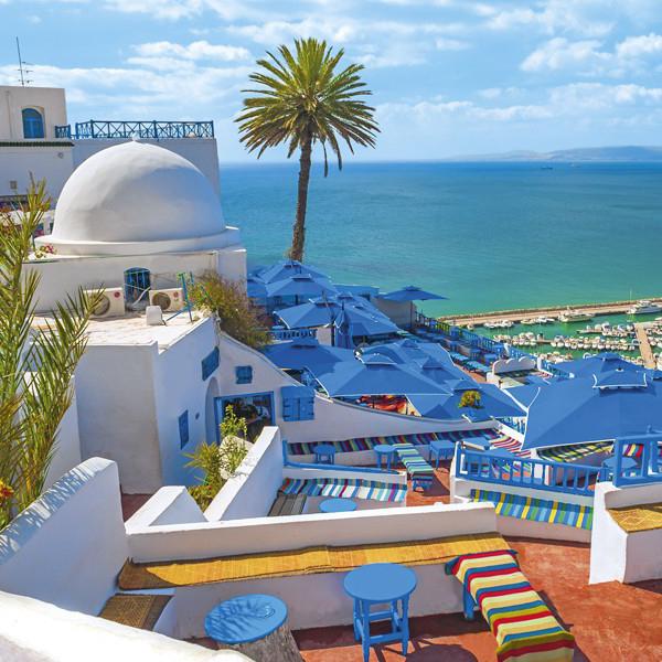 Посетить Сиди-Бу-Саид, красивые города Туниса